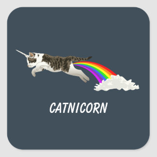 Catnicorn - I Poop Rainbow Square Sticker