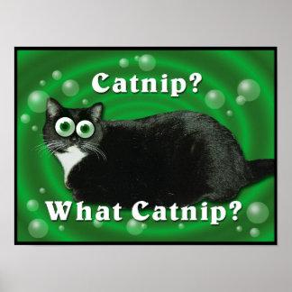 Catnip Kitty Poster