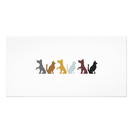 Cats and Dogs cartoon pattern Personalized Photo Card