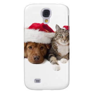 Cats and dogs - Christmas cat - christmas dog