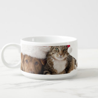 Cats and dogs - Christmas cat - christmas dog Bowl