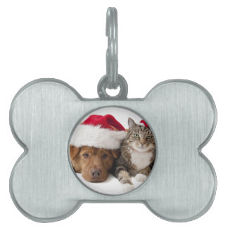 Cats and dogs - Christmas cat - christmas dog Pet Tag