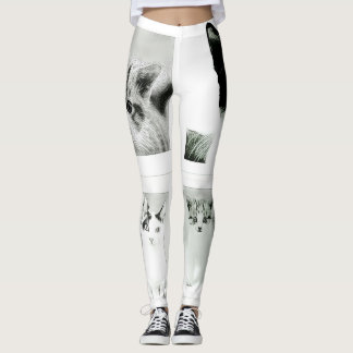 Cats and Kittens Collage Funky Leggings