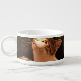 Cats and lights - Christmas cat -christmas tree Bowl