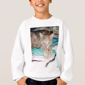 CATS AND MORE CATS SWEATSHIRT