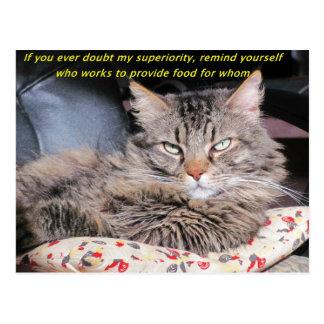 Cats Are Superior Meme Postcard