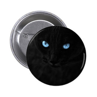cats blue eyes 2 inch round button