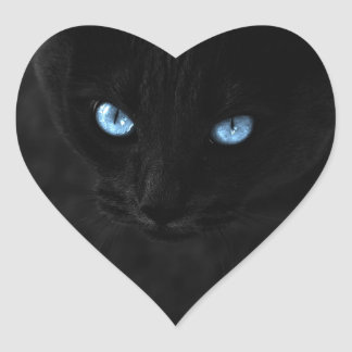 cats blue eyes heart sticker