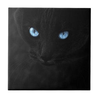 cats blue eyes tiles