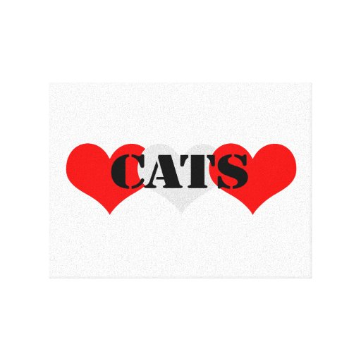 Cats Stretched Canvas Prints