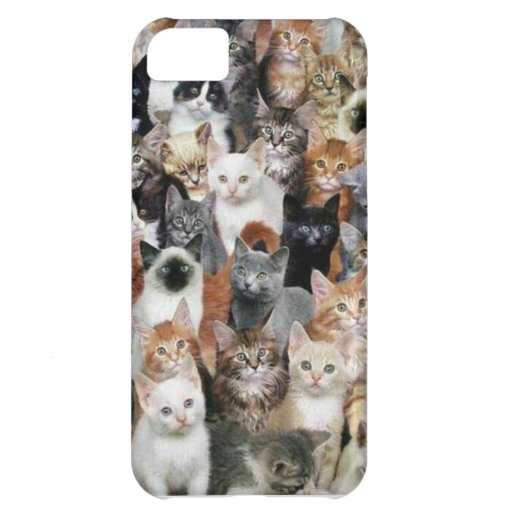 Cats iPhone 5C Covers