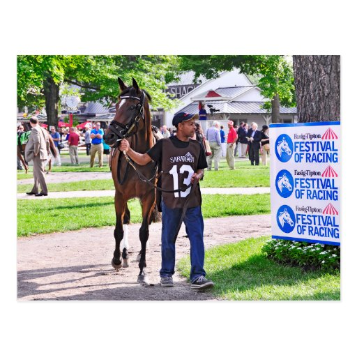 Cat's Claw wins the Waya Stakes Post Cards