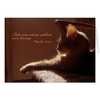 Cats Come and Go Card