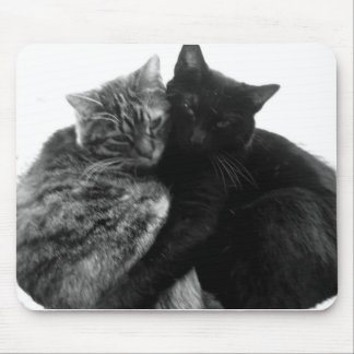 Cats Cuddling Mousepad
