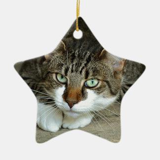 Cat's Eyes Ceramic Ornament