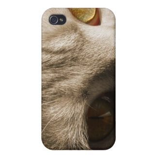 Cat's Eyes iPhone 4 Cover