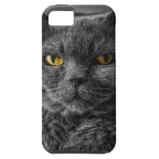 Cat's Eyes iPhone 5 Cover