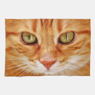 Cat's Eyes Kitchen Towel