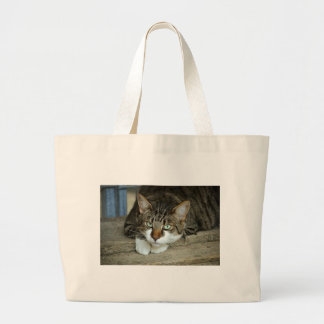 Cat's Eyes Large Tote Bag