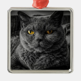 Cat's Eyes Metal Ornament