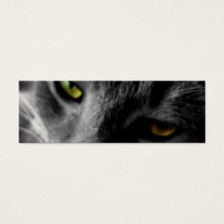 Cat's Eyes Profile Cards