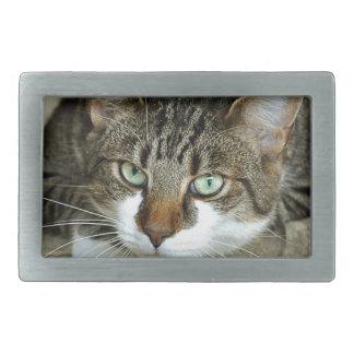Cat's Eyes Rectangular Belt Buckles