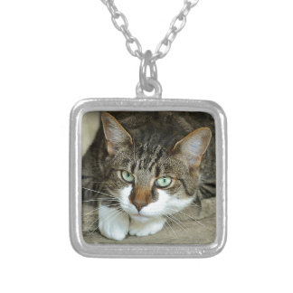 Cat's Eyes Silver Plated Necklace