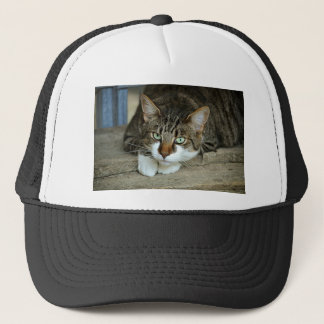 Cat's Eyes Trucker Hat