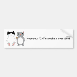 Cats Feel Better Encouragement Custom Bumper Sticker