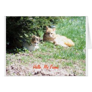 Cats Friends, Gem Card