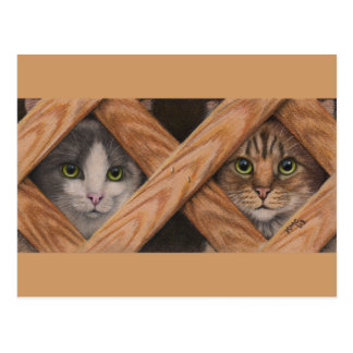 Cats Grey Tabby behind lattice fence postcard