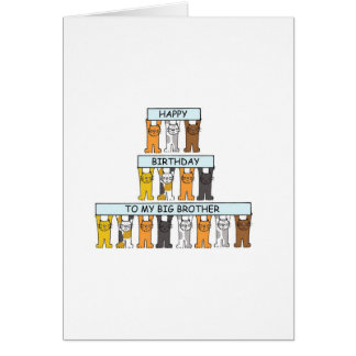 Cats Happy Birthday Big Brother. Greeting Card
