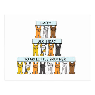 Cats happy  birthday little brother. postcard