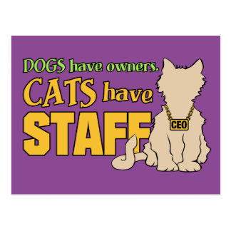 CATS HAVE STAFF postcard
