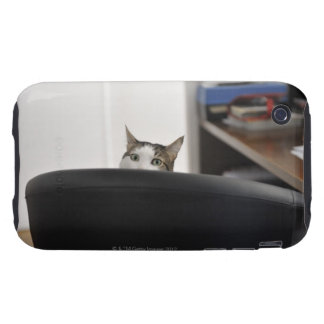 Cat's head showing of an office chair, nearby iPhone 3 tough cases