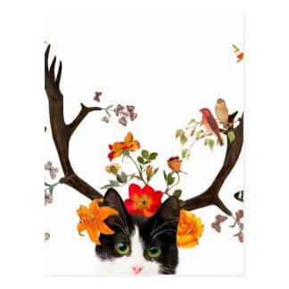 Cat's Horns Postcard