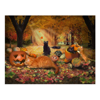 Cats in Autumn Postcard