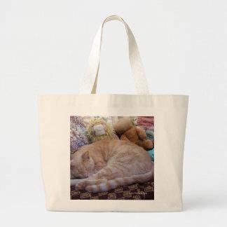 CAT'S IN THE BAG