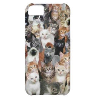 Cats iPhone 5C Cover