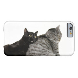 Cats love barely there iPhone 6 case