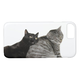 Cats love iPhone 8/7 case