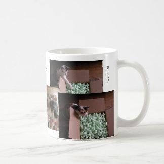 Cats Love To Help Mug