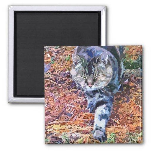 CATS REFRIGERATOR MAGNETS