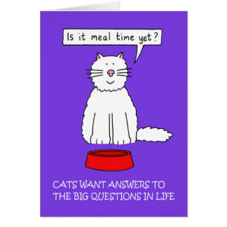 Cats need answers to questions. card