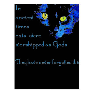 Cats Never Forget Postcard