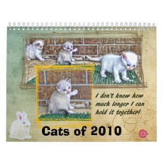 Cats of 2010 wall calendar