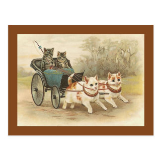 """Cats on a Coach Ride"" Vintage Postcard"