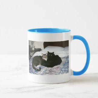 cats on bed mug