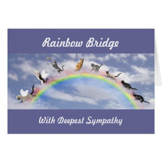 Cats On Rainbow Bridge Card