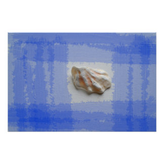 cats paw shell with blue streaks posters